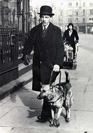 Guide dogs: Archive guide dog image