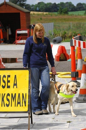 Guide dogs: Guide Dogs training schools