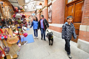 Guide dogs: Guide dog costs