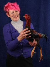 Champion chickens | Life and style | The Guardian
