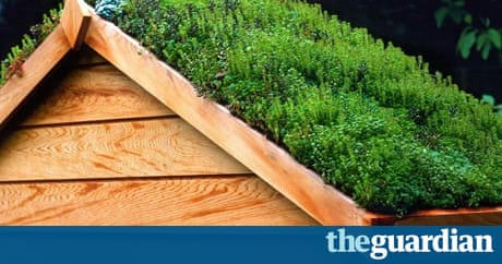 Grow Your Shed Life And Style The Guardian