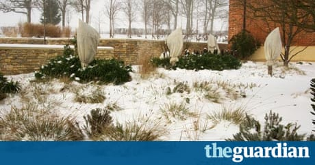 Diary of a garden designer the big freeze life and for Garden design jobs essex
