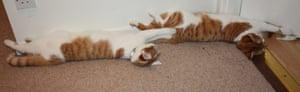 Sleeping beauty: Brucie and Alvin