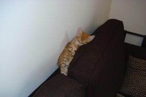 Sleeping beauty: Jordy