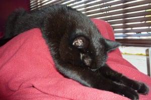 Sleeping beauty: Lucy