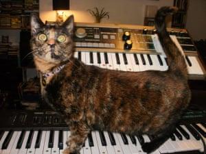 Special talent: Coco
