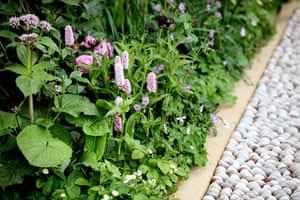 2012 Chelsea flower show: The Laurent Perrier garden