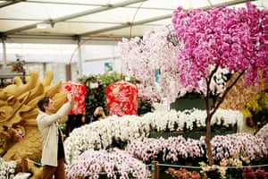 2012 Chelsea flower show: Blossom-covered trees