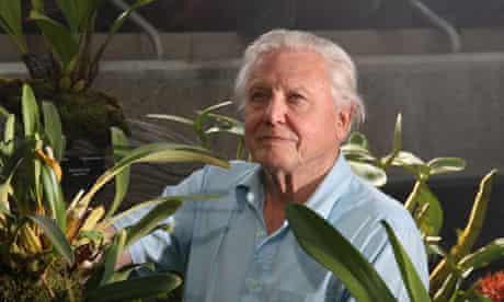Sir David Attenborough at Kew gardens