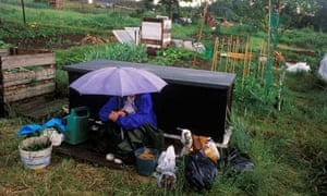 A rainy day on the allotment