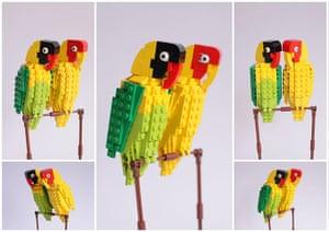 Lego birds: Lovebirds