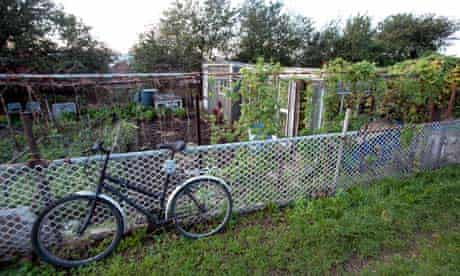 Pure and simple … a bicycle parked beside an allotment.