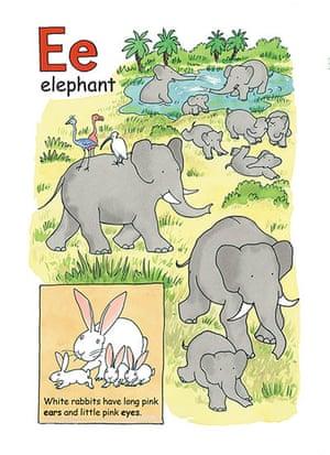Alphabet : E is for elephants