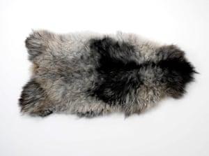 Wool Week gallery: Sheepskin rug