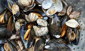 kitchen tips: a bowl of cockles and mussels, dead-a-dead-o