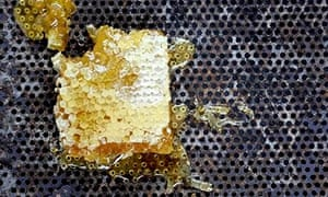 honeycomb on a textured surface GFY
