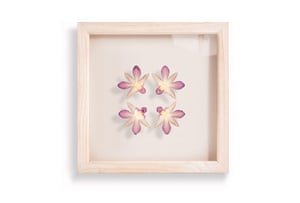 Mother's Day gifts: Hannah Brown framed flowers