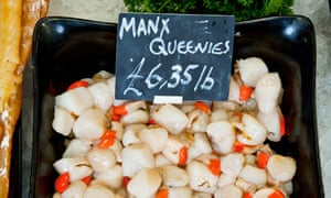 Isle of Man queen scallops