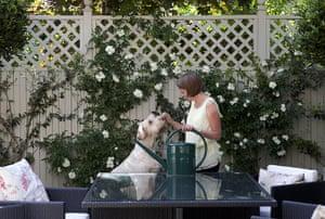 Tiny courtyard garden: Debbie Kellow and her dog in her courtyard garden