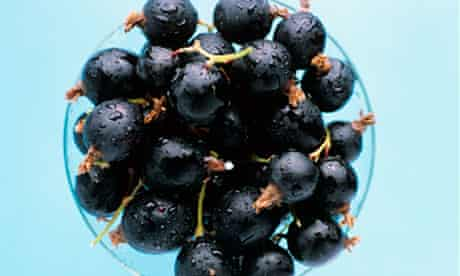 Good for you: blackcurrants