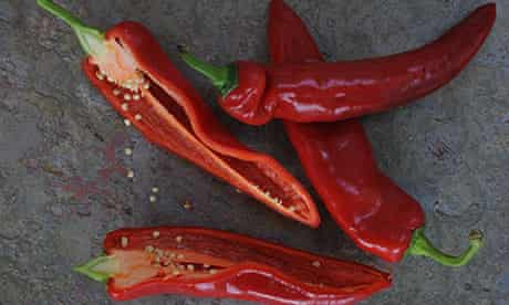 More elongated, thinner-skinned romano/ramiro variety peppers have a shade more taste