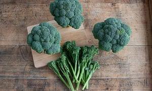 Good for you: broccoli