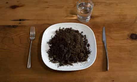 Plate of soil
