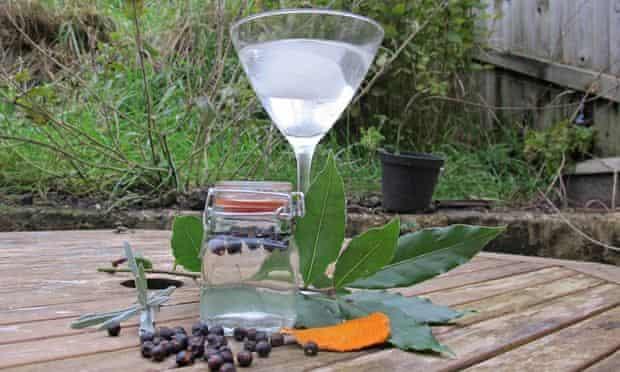 Homemade gin and tonic