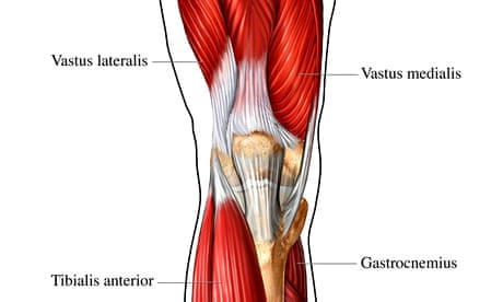 How To Use A Foam Roller A Runners Guide Life And Style The
