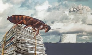 Composite of cockroach, mushroom cloud and newspapers