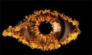 Celebrity Big Brother 2010 logo