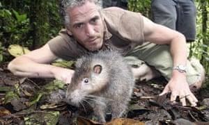 Steve Greenwood and a Bosavi woolly rat