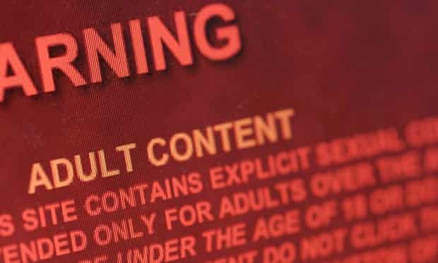 Pornography website