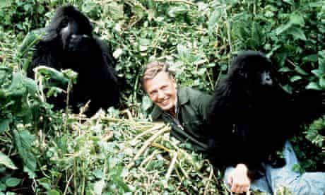 Life on Earth: David Attenborough
