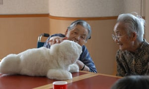 Japanese Paro pet, which is designed to stimulate patients with dementia and Alzheimer's
