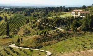 Investing in a vineyard? Beware grapes of wrath | Money