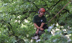 Arborist Gavin Bodenham