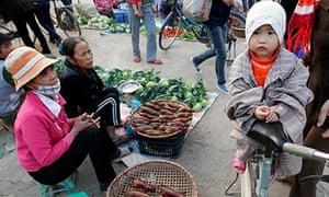 Slaughtered rats at Vietnamese market