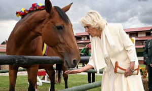 Camilla, Duchess Of Cornwall and a horse