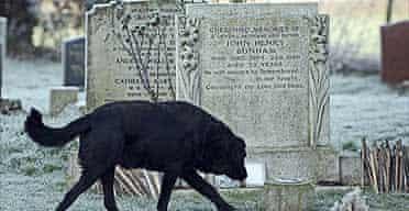 John Bonham's headstone