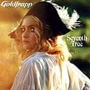 Goldfrappe CD