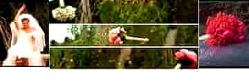 Guns 'N Roses - November Rain video grab (bouqwahey)