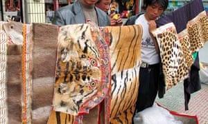 tiger leopard skins