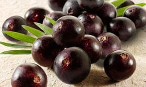 Acai Berries anti oxidant fruit