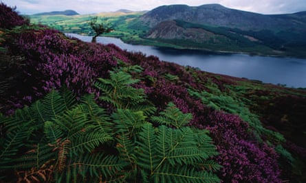 Ennerdale Area of Western Lake District
