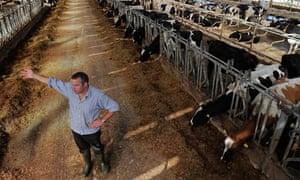 North Devon super dairy