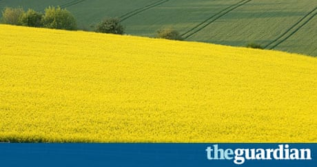 Agricultural Land Prices Hit Record High Business The