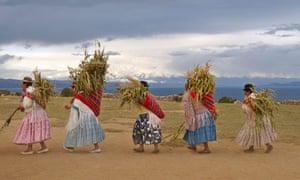 Aymara carry corn crops