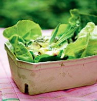 Nigel Slater's Chicken, tarragon and asparagus  salad