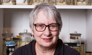 Neuroscientists Reverse Some Autism >> Uta Frith The Brain Is Not A Pudding It Is An Engine Science